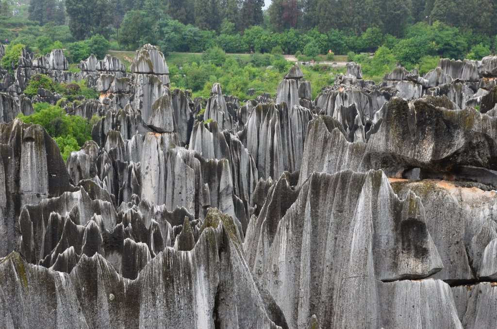 Shilin Stone Forest World Heritage Site in China