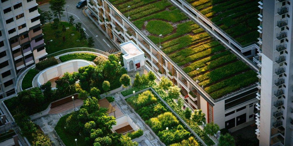 Urbanization green