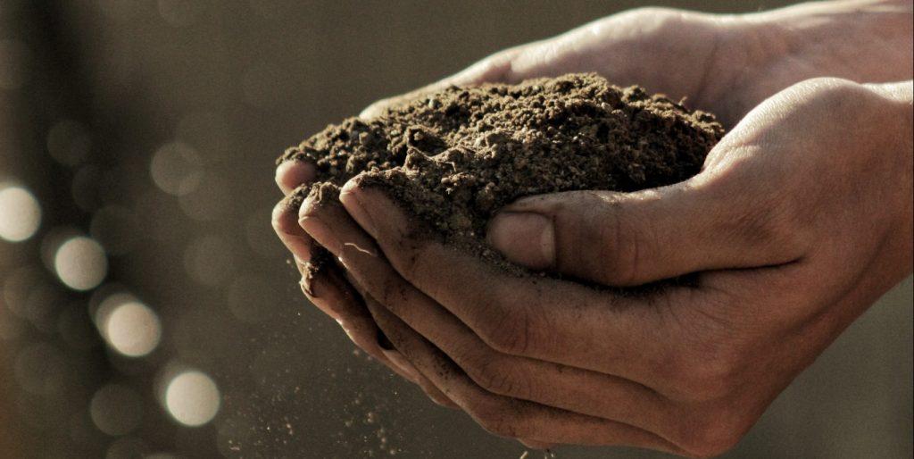 Soil in man's hand