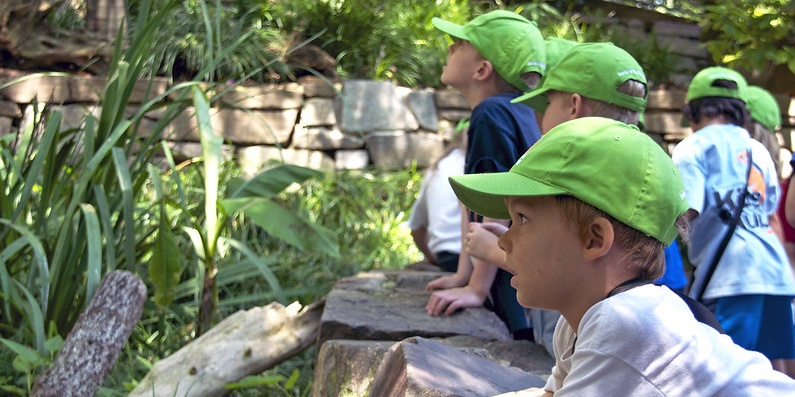 children at a zoo