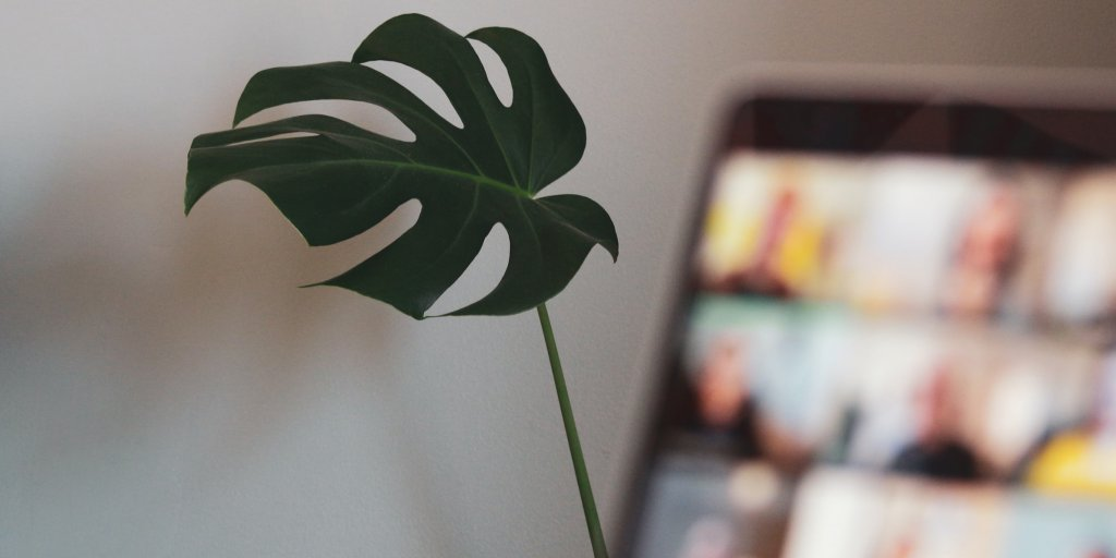 Plant in teleconference